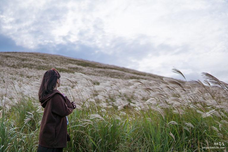 濟州遊記 2018 | 濟州自駕遊 | 新星岳-看滿山的芒草 | 새별오름 | Instagram拍照熱點 | 晚餐吃牛骨湯~